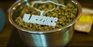 Video: Blacc Zacc - Different Raccs